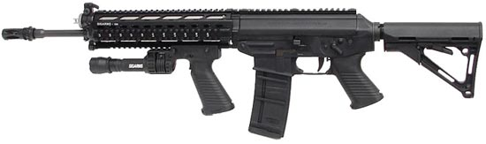 SIG 556 SWAT